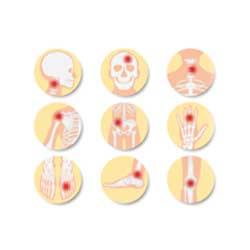 Specialist Orthopedic