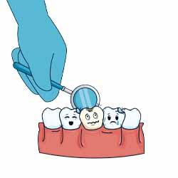 Specialist General Dentist