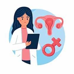 Specialist Gynecologist